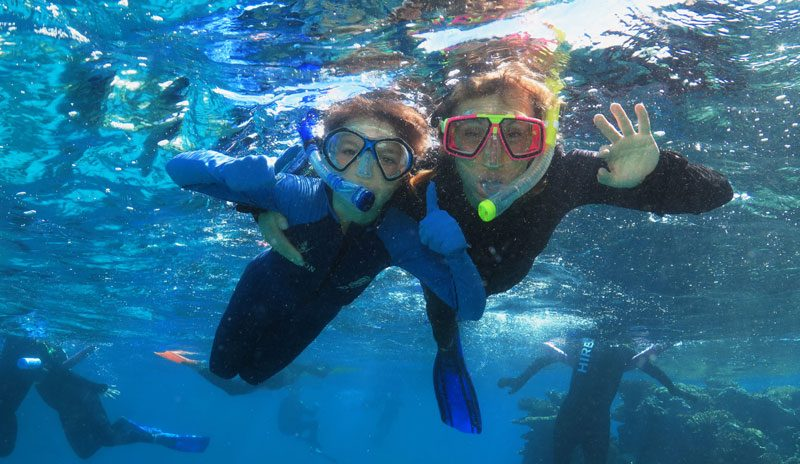 australia queensland diving michaela strachan