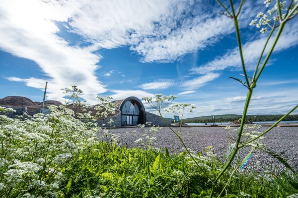 swedish lapland icehotel 365 summer flowers ak