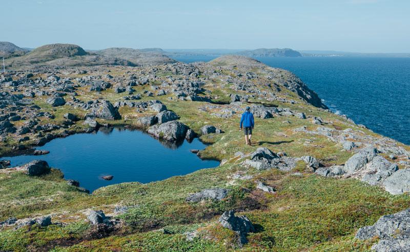 canada newfoundland quirpon island man wandering gte