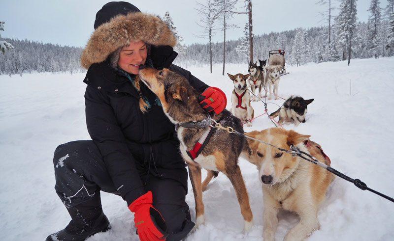 icehotel huskies sophie radcliffe