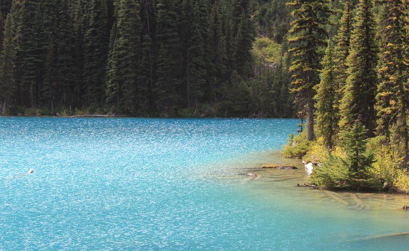 joffre lakes british columbia