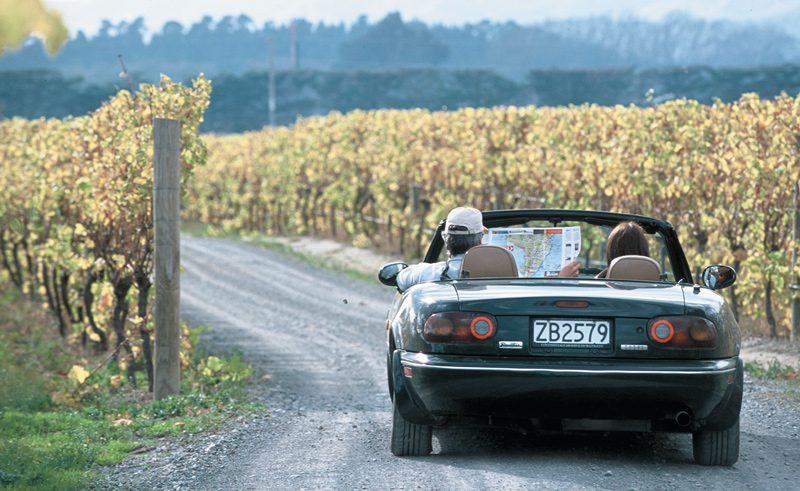 touring vineyard wairarapa new zealand