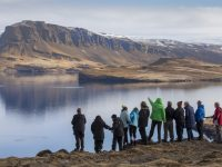 discover the world escorted holiday group whale fjord iceland