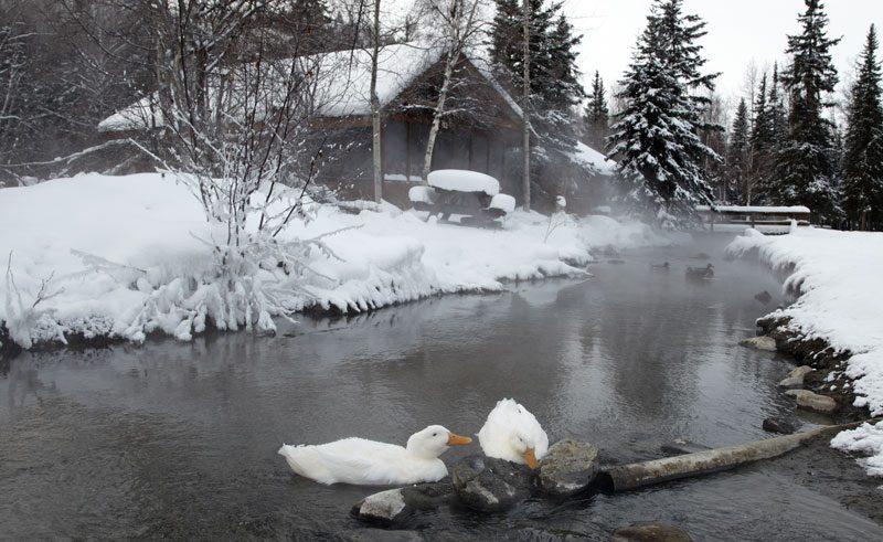 alaska chena winter3