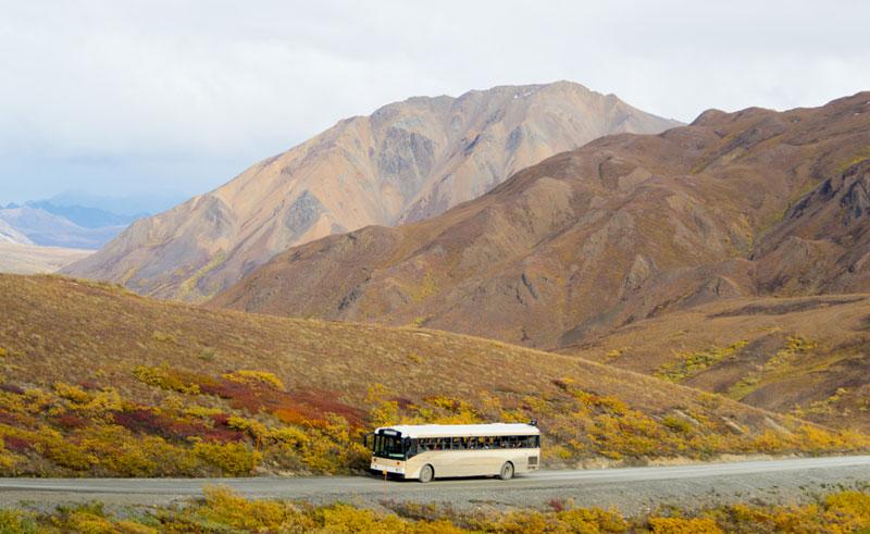 alaska denali national park bus istock
