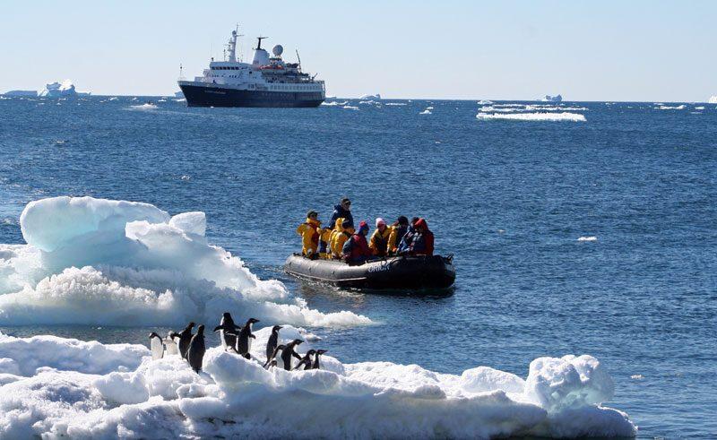 antarctica peninsula paulet island adelies and zodiac qe