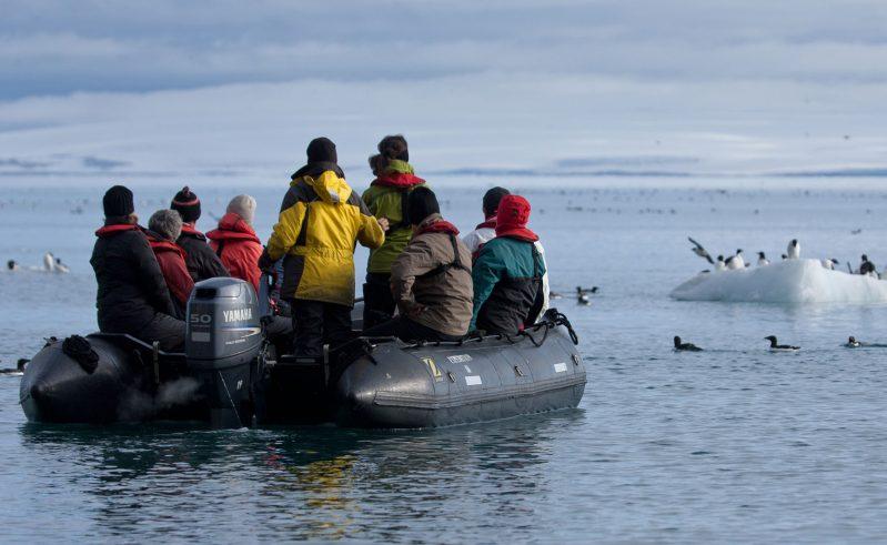 arctic spitsbergen alkefjellet by zodiac rth