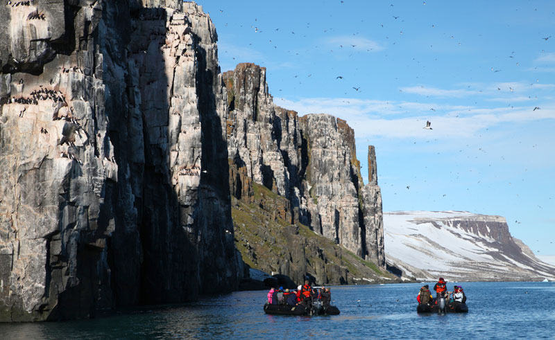 arctic spitsbergen bird cliffs zodiac pq