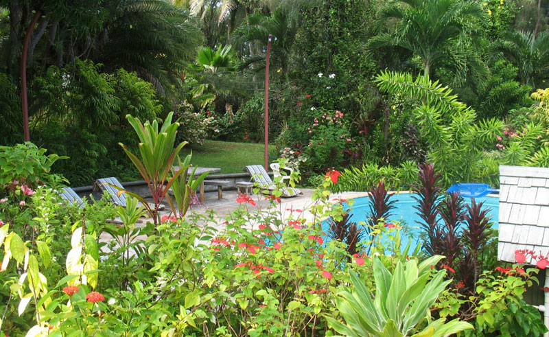 atiu villas garden and pool