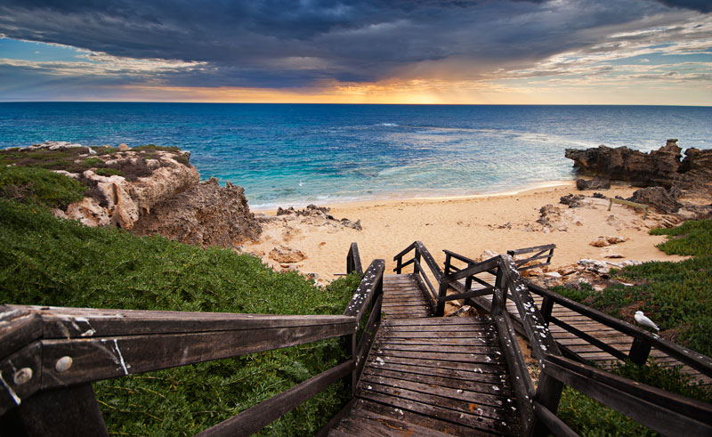australia wa rockingham penguin island back beach rwe