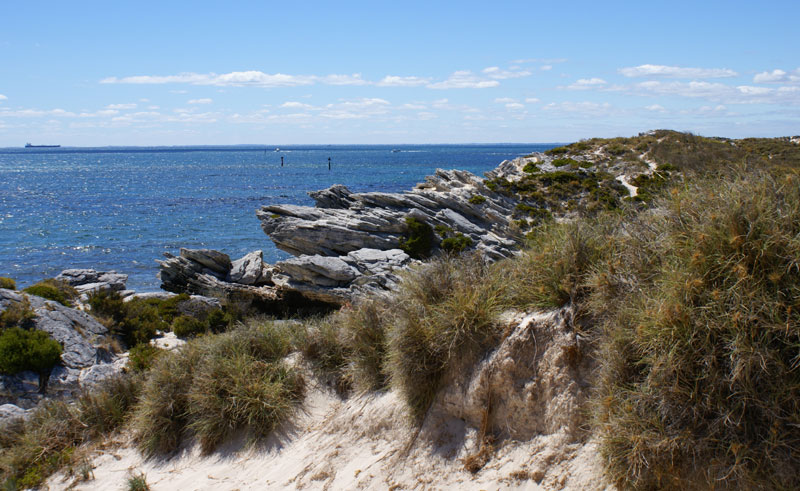 australia wa rottnest island pf