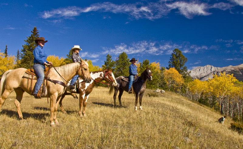 canada alberta jasper horse riding tj