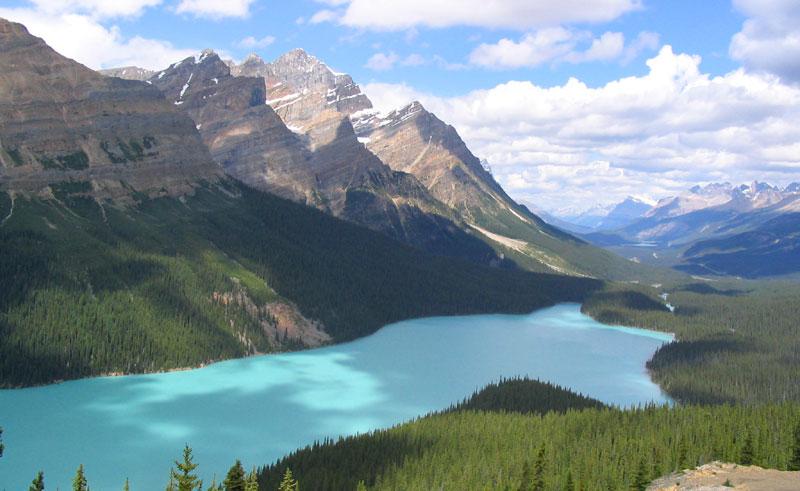 canada alberta peyto lake