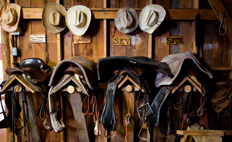 canada bc echo valley ranch stables