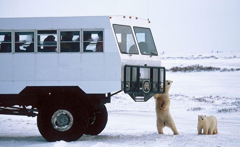 canada churchill polar rover on tundra nh