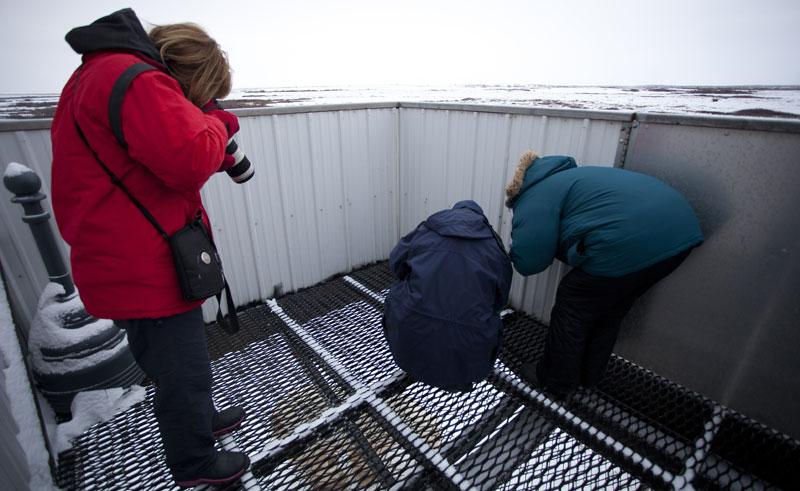 canada manitoba polar rover outside deck nh