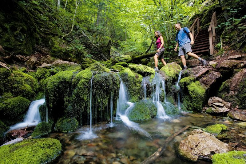 canada new brunswick hikers fundy national park nbt 1