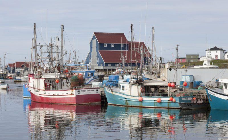 canada newfoundland bonavista harbour nlt