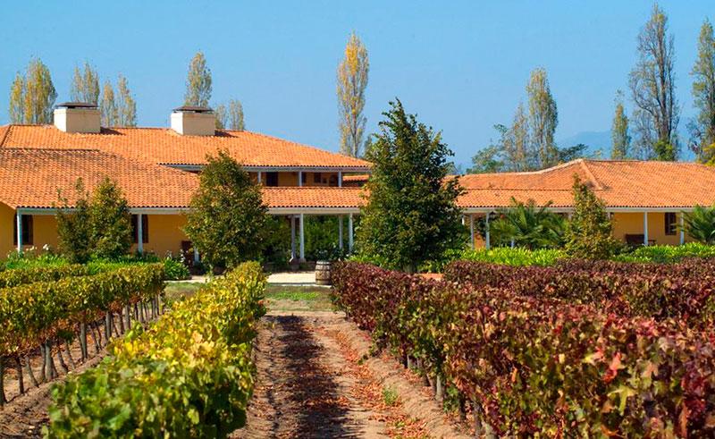 central valleys hotel vina la playa garden vineyard