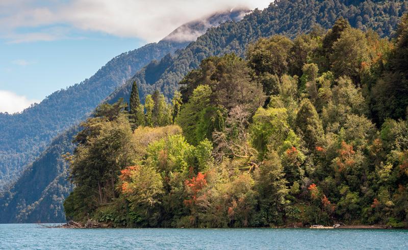 chile lakes vincente perez rosales nat pk adstk