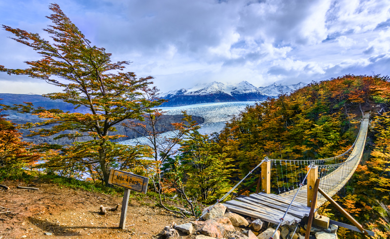 chile patagonia grey glacier trail is