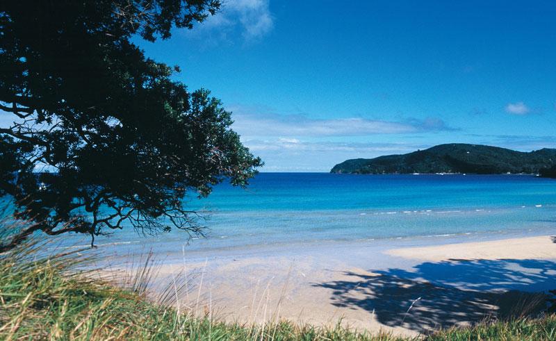 earthsong lodge beach