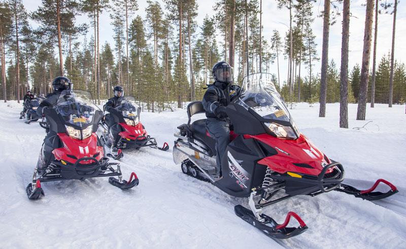 finland lapland ranua snowmobile safari