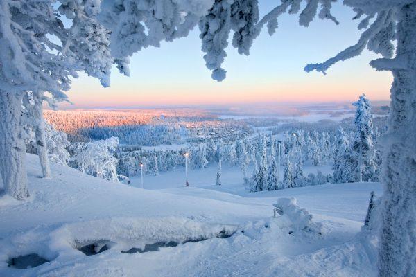 finland winter taiga forest istk