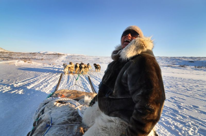 greenland inuit husky sledge team vg