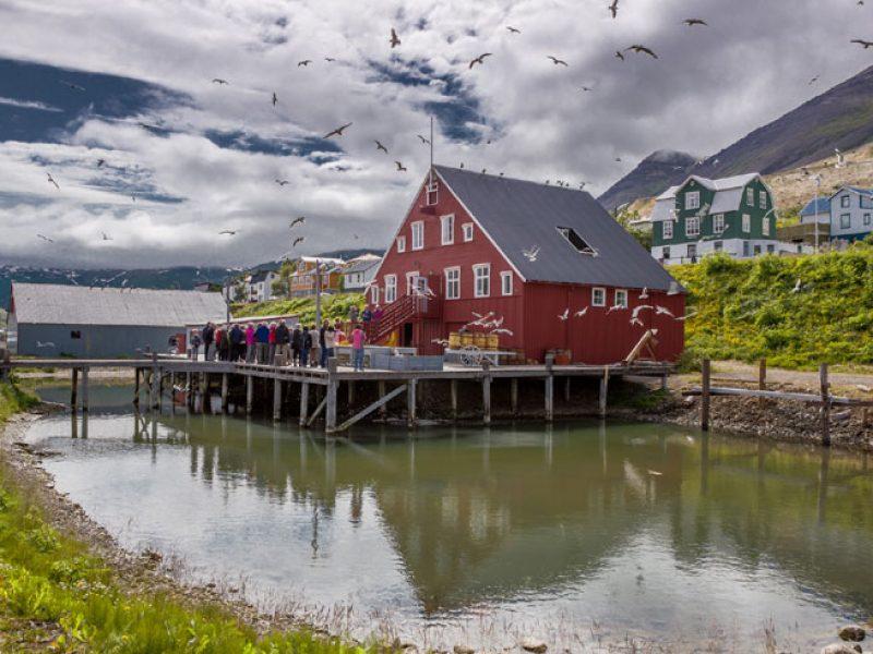 iceland north siglufjordur rth