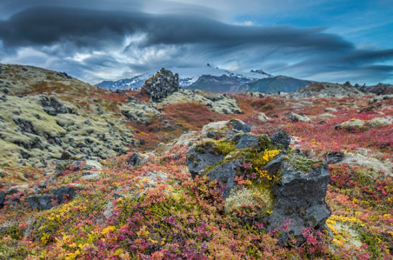 iceland west snaefellsjokull autumn rth
