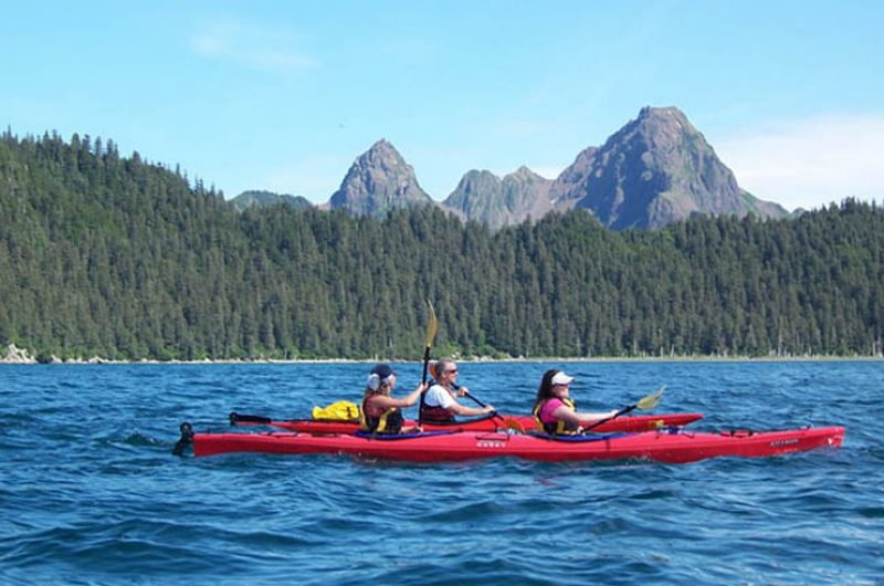 kenai fjords wilderness lodge kayaks close