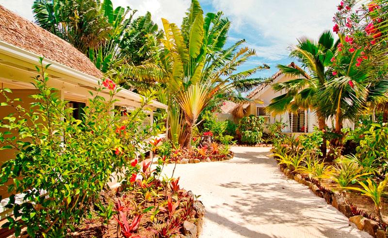 manuia beach resort premium accommodation
