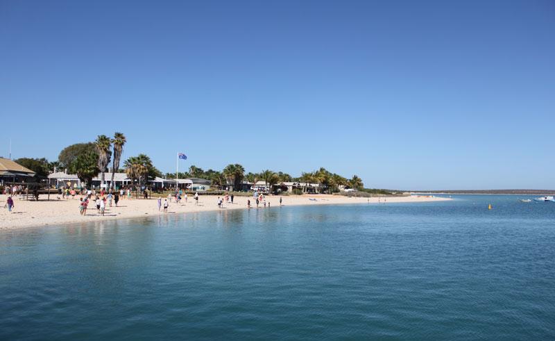 monkey mia resort coastline