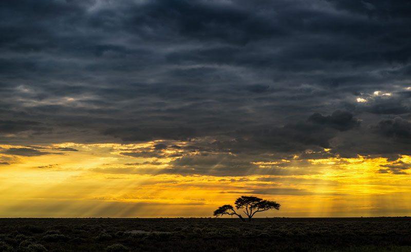 namibia etosha brooding sky over landscape rth