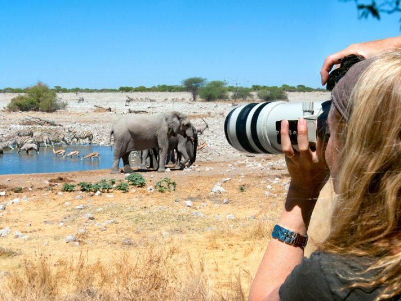 namibia etosha photographing a waterhole istk