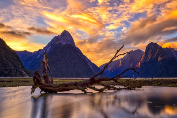 new zealand fiordland milford sound sunset adstk