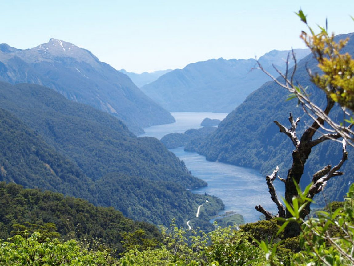 new zealand fiordland wilmot pass doubtful sound view ls