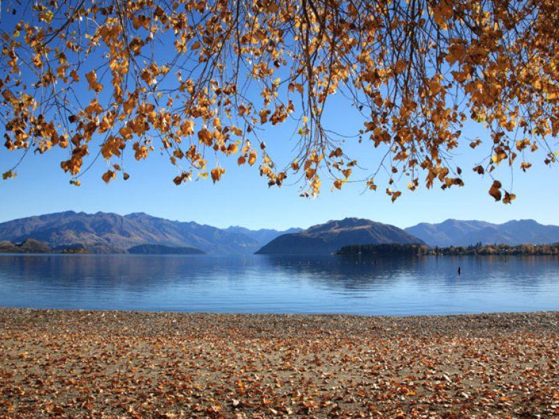 new zealand lake wanaka lakeshore autumn slt