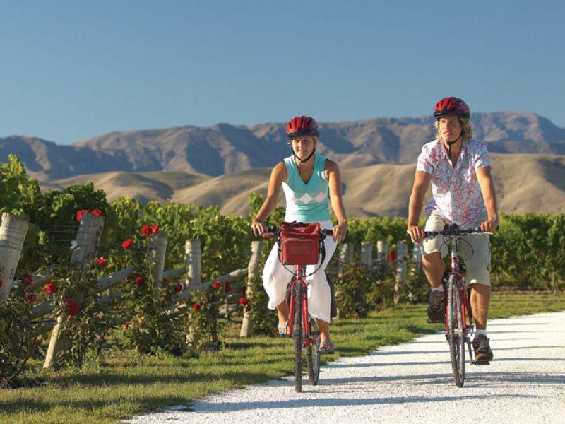 new zealand marlborough vineyards exploring by bike tnz