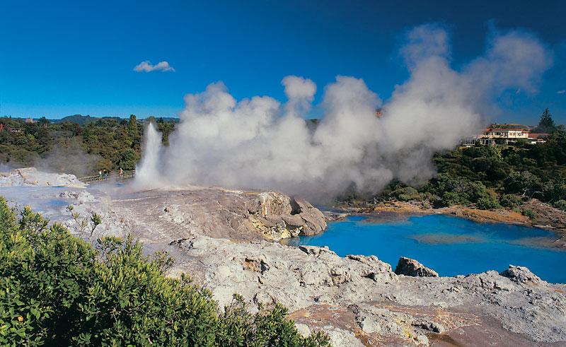 new zealand rotorua whakarewarewa pohutu geyser2 dr