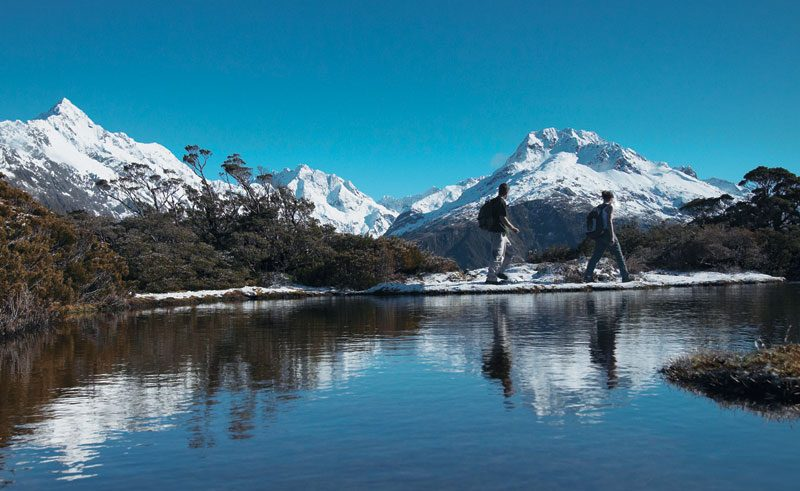 new zealand southern lakes routeburn track hikers tnz