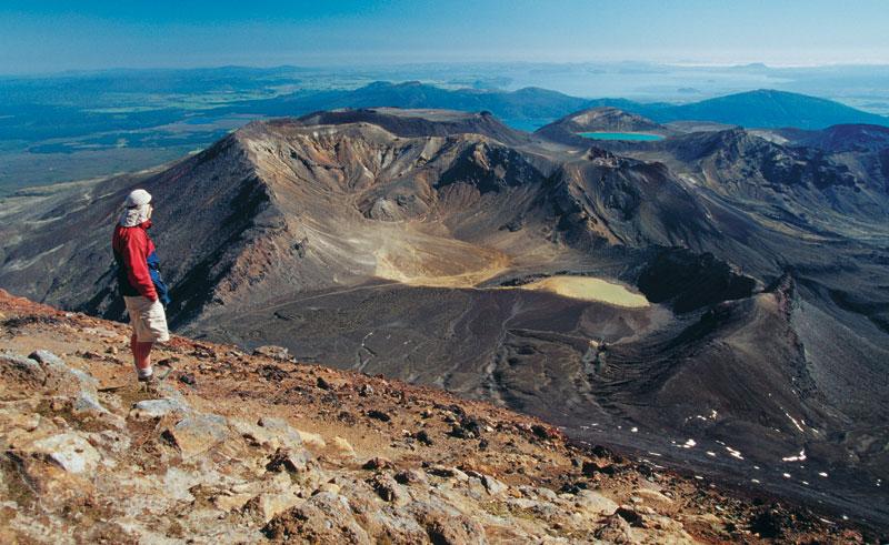 new zealand tongariro national park hiker tnz