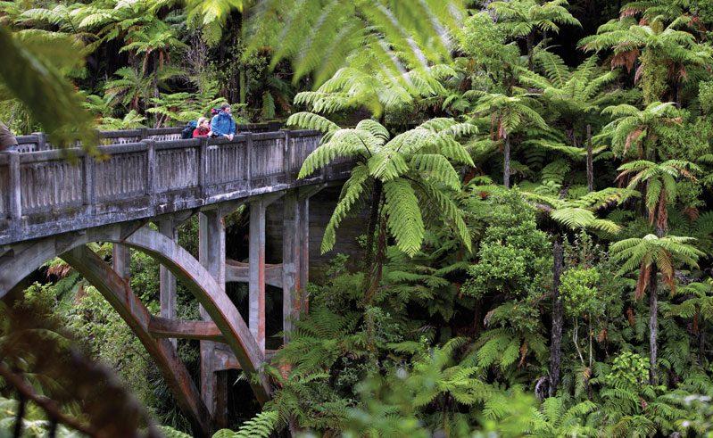 new zealand whanganui river bridge to nowhere vr