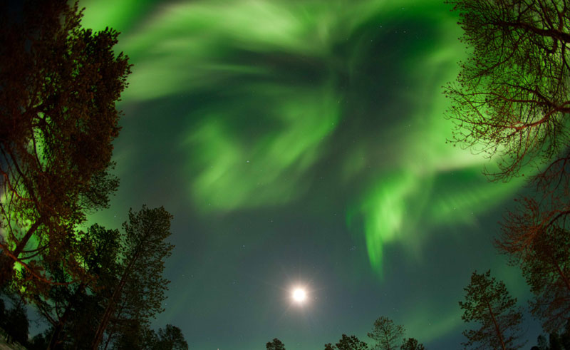 northern norway malangsfjord northern lights
