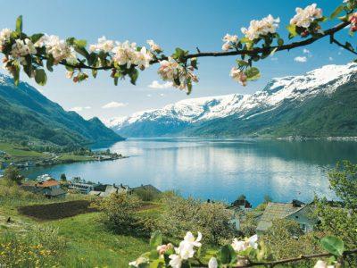 norway fjords lofthus blossom vn