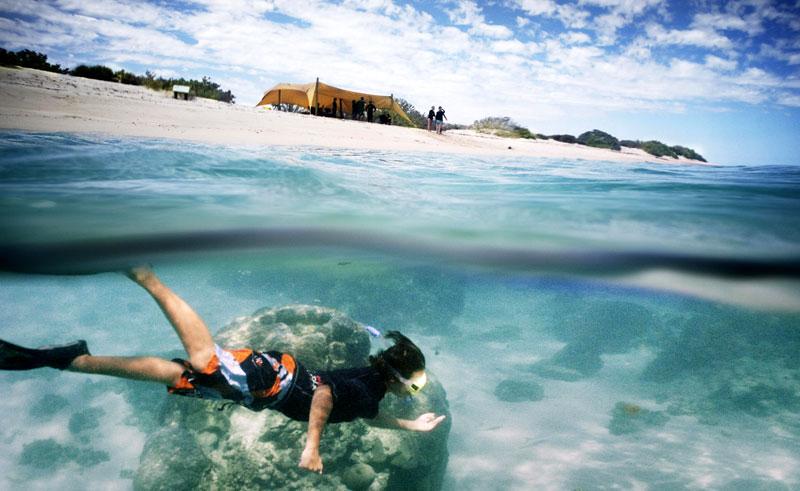 sal salis wilderness camp snorkelling from beach