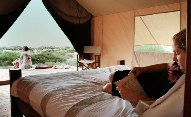 sal salis wilderness camp tent interior