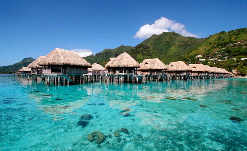 sofitel moorea la ora beach resort overwater bungalows