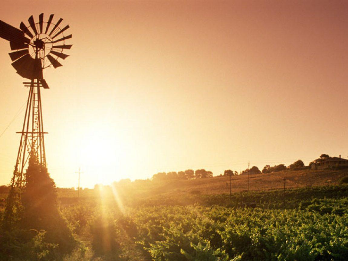 south australia barossa valley windmill ta